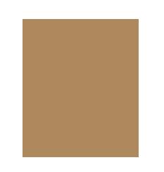 Gasthaus-Pension  Schornstein Logo